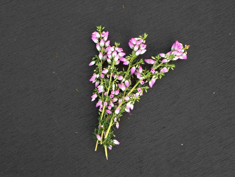 Thumbnail photograph of Eden Valley