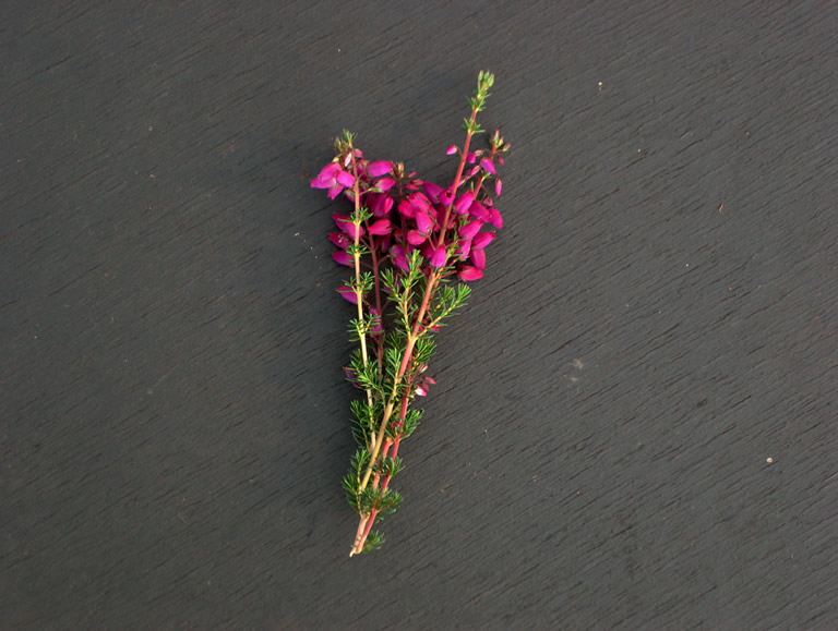 Thumbnail photograph of Glencairn